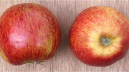 Un estudio destaca las propiedades antioxidantes de granada, manzana y uva