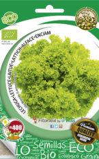 Semillas ecológicas de Lechuga